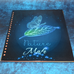 Cuadernos 5 Materias