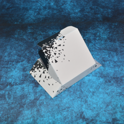 Caja Cartón Bonitas  - 2